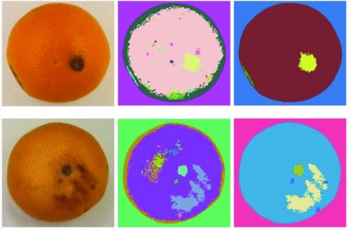 How an orange gets analyzed for defects via machine learning.